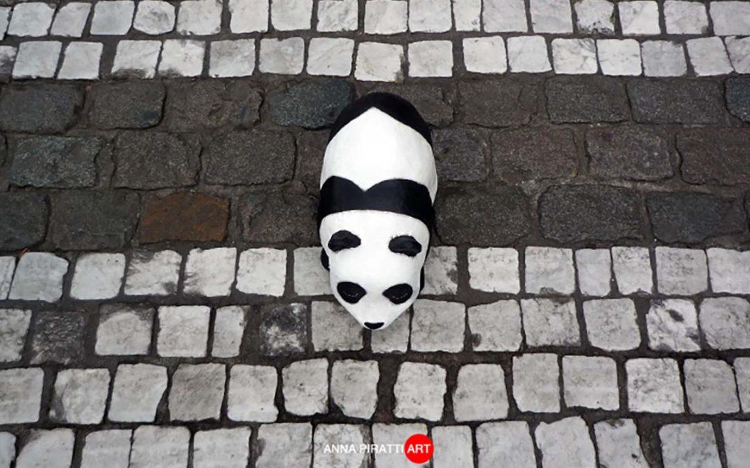 La vera storia della liberazione di un Panda